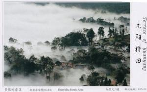 Douyishu Scenic Area Aerial Terrace Of Yuanyang China Postcard