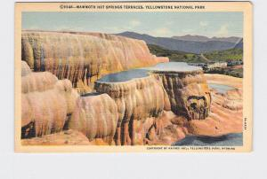 VINTAGE POSTCARD NATIONAL STATE PARK YELLOWSTONE MAMMOTH HOT SPRINGS TERRACES #6