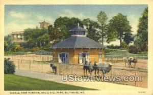Camels, Park Mansion, Druid Hill Park Baltimore MD Unused