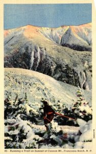 New Hampshire Franconia Notch Skiing Running A Trail On Summit Of Cannon Moun...