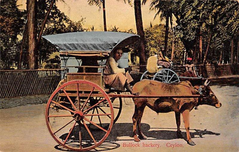 Bullock Hackery Ceylon, Ceylan Unused