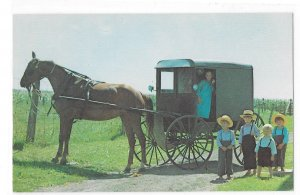 Amish Family Children Horse and Buggy Lancaster PA Vincent Tortora Postcard