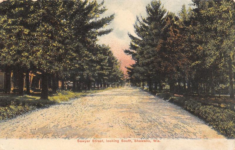 Shawano Wisconsin~Sawyer Street South~Homes in Trees on Dirt Road~1907 Postcard
