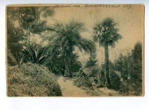 168234 Georgia BATUMI Zeleny Mys Botanical Garden Vintage PC