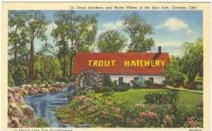 Trout Hatchery, Water Wheel, Blue Hole, Castalia, OH