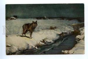 156924 HUNT Wolf by WIERUSZ-KOWALSKI vintage color PC