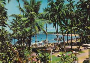Sri Lanka Ceylon Mount Lavinia Tropical Garden