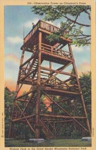 Great Smoky Mountains National Park New Observation Tower On Clingman's ...