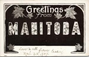 Greetings from Manitoba Large Letter from Essie c1907 Postcard F5