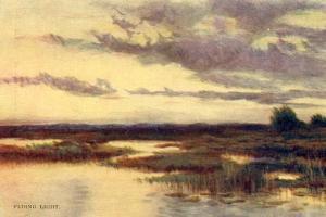 Fading Light  (Watercolor)