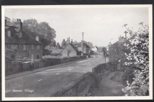 Berkshire Postcard - Bisham Village  V2072