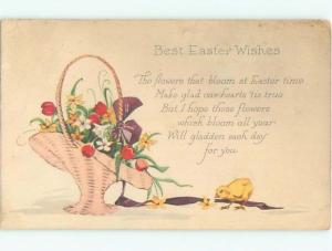 Divided-Back EASTER CHICK SCENE Cute Postcard AA0863