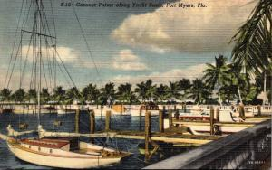 Florida Fort Lauderdale Coconut Palms Along Yacht Basin Curteich