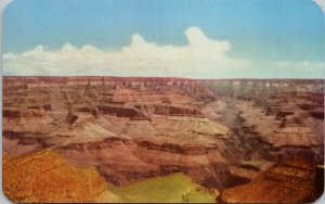 Grand Canyon Arizona AZ Unused Bob Petley Postcard F41