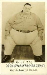 W.D. Cowan 741 LBS, Age 23 6 ft tall, Heaviest Person Unused close to grade 1...