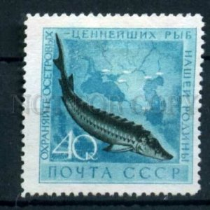 505293 USSR 1959 year Protection of marine fauna fish stamp
