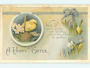 Divided-Back easter CHICK IN BASKET WITH FLOWERS r3478