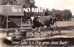 Stone Lake Wisconsin~Dog-Gone Good Town~This is No Bull~Diary Cow~1942 RPPC