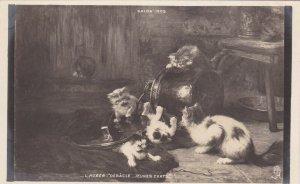 RP: Salon 1903 ; L. Huber-Debacle Jeunes Chats; TUCK Seris VI. No. 55