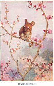 Noel Hopking~Forget-Me-Knot? Mouse With Tangled Tail~Cherry Blossoms~Medici