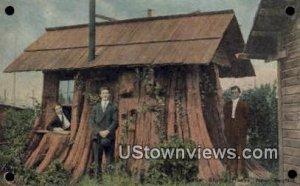 Cedar Stump House - Seattle, Washington