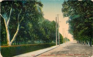 Hollywood Long Branch New Jersey~Cedar Avenue~Dirt Road~Trimmed Hedges~1919