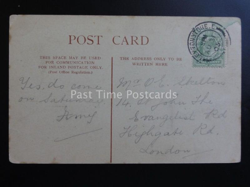 Essex: Wanstead Park showing Swans c1905 Pub by Woodbury Series 2261