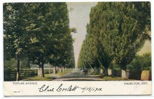 Poplar Avenue Hamilton Ontario Canada 1910c postcard