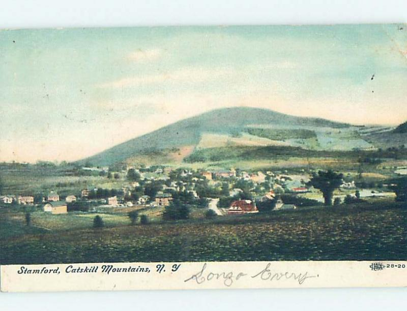 Divided-Back PANORAMIC VIEW Stamford - Near Delhi & Oneonta & Schoharie NY i1528