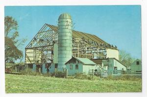 Amish Barn Raising Farm Neighbors Postcard Lancaster PA