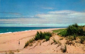 Massachusetts Cape Cod View Of Ocean and Sand Dunes