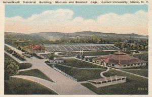 ITHACA , New York , 1900-10s ; Stadium & Baseball Cage