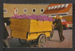 Flower Vendor Postcard