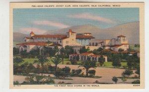 P2077, vintage postcard agua caliente jockey club baja calif. mexico unused