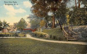 Bridgeton New Jersey~City Park~Winding Path~Steps Up Hillside~Fence~c1910 PC