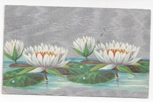 Easter Water Lilies Embossed Silver Moire Background 1909 Winsch Back Postcard