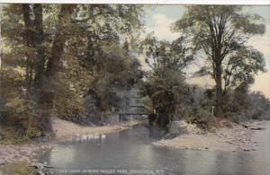 New York Rochester Red Creek In Genesee Valley Park 1911