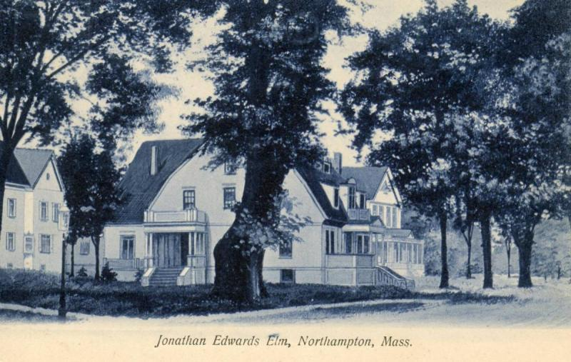 MA - Northampton. Jonathan Edwards Elm