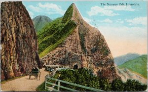 The Nuuanu Pali Honolulu Hawaii HI Horse & Buggy c1924 Postcard E76