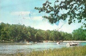 Romania Sibiu vedere din Dumbrava lac concurs barci cu vasle Postcard