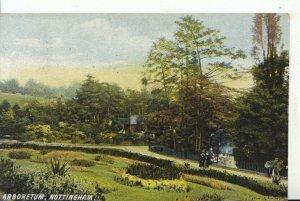 Nottinghamshire Postcard - Arboretum -  Ref 16329A