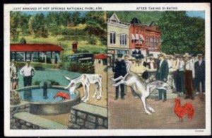 Arkansas Just Arrived at HOT SPRINGS NATIONAL PARK 21 baths comic pm1936 LINEN