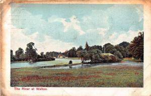 The River at Walton Panorama Postcard