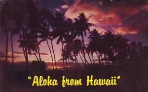 Hawaii Aloha From Hawaii