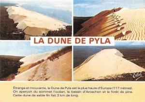 France La Dune de Pyla, Bassin d'Arcachon Desert Landscape