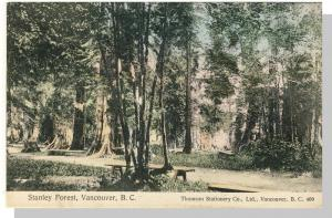 Vancouver, BC/B.C., Canada Postcard, Stanley Forest