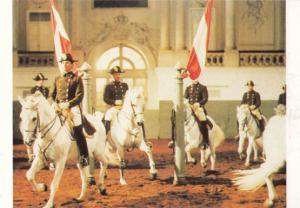 Quadrille Spanish Riding School Of Vienna Postcard