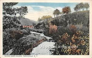 Scene near Village Parksville NY 1921
