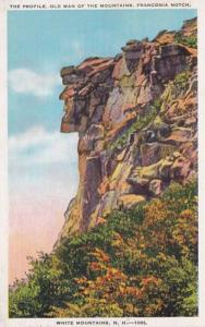New Hampshire White Mountains The Old Man Of The Mountains Franconia Notch 1935