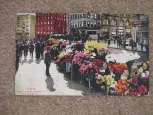 Street Flower Vendors, San Francisco, California, 1915, used vintage card